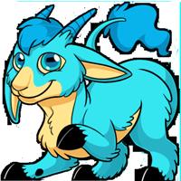 Makoat - Blue