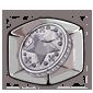 Silver Token Ice Cube