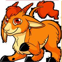 Makoat - Orange