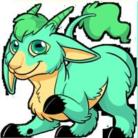 Makoat - Turquoise