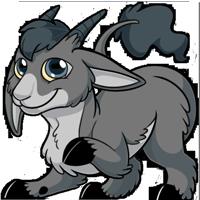 Makoat - Grey