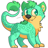 Ridix - Turquoise